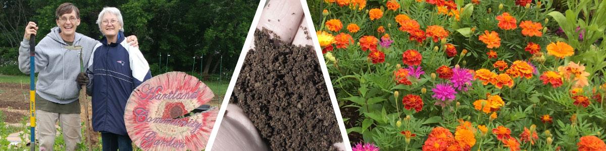 master gardener collage of flowers, dirt, and volunteers in garden