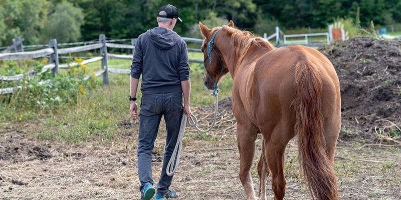 Editor Tom Weaver walks with horse