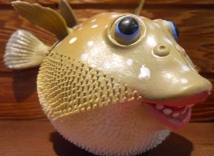 """""""Fugie"""" the blowfish, an informal mascot for the Interfaith Center"""