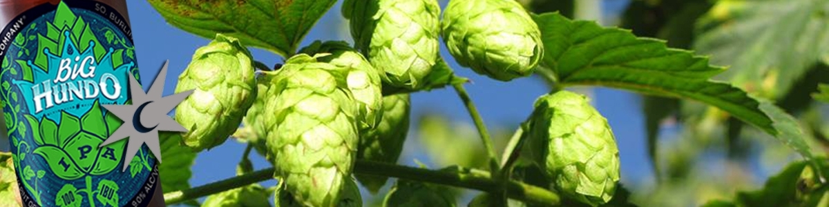 Magic Hat supports UVM Extension Hops Project