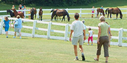 Visitors at Morgan Horse Farm