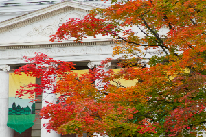 Fall foliage in front of Waterman