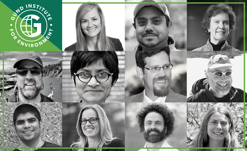 An images of new Fellows and Affiliates of UVM's Gund Institute for Environment.