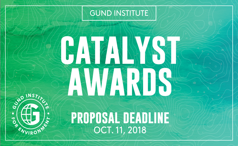 Gund Institute Catalyst Awards Seed Grant Promo Image