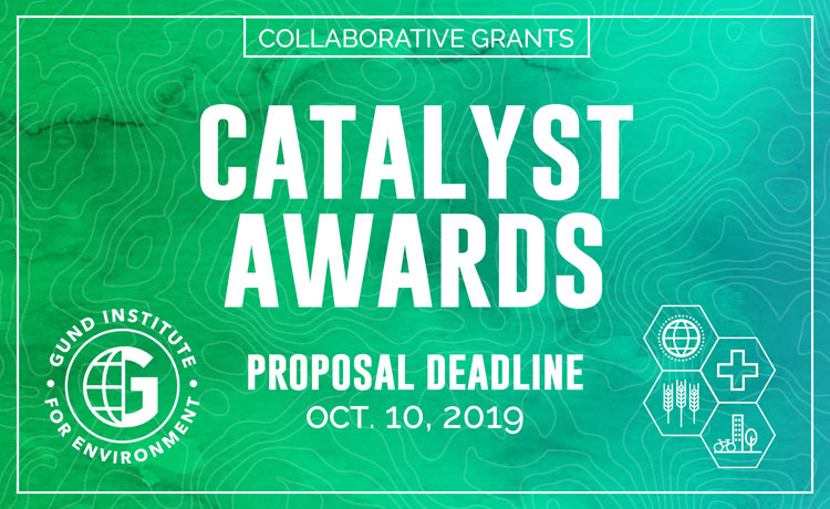 Gund Catalyst Award request for proposals