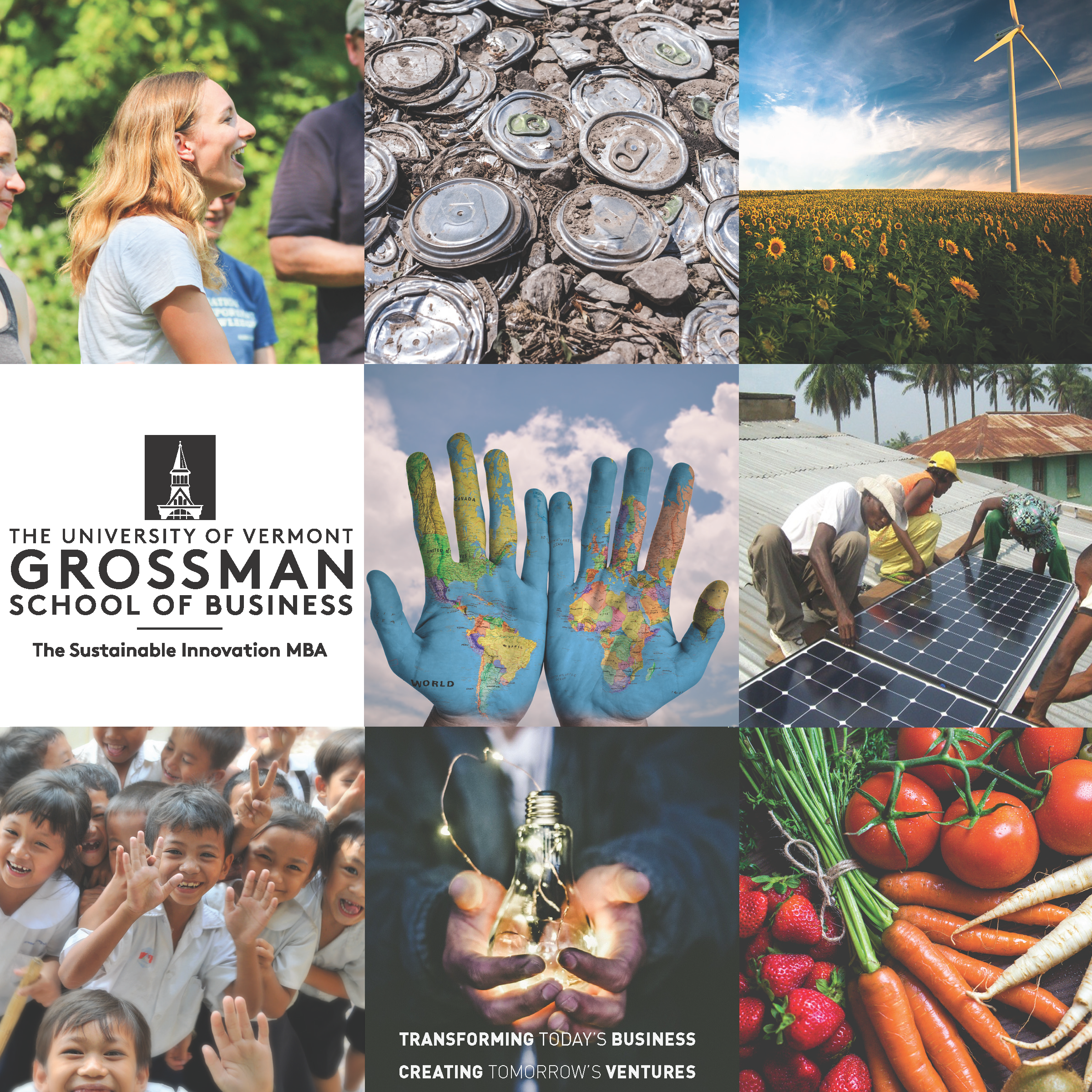 The Sustainable Innovation MBA | Grossman School of Business | The