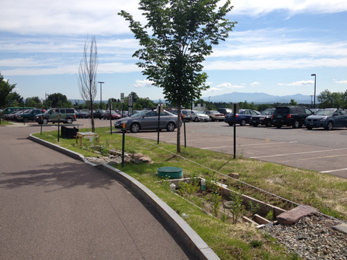 east facing street view of biorentention cell in parking lot median