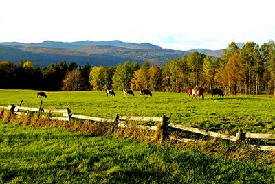 Scenic Vermont Farm Landscape