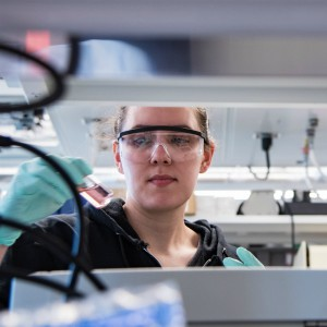 Graduate student works in the lab