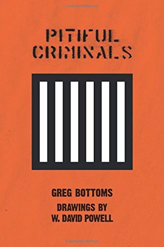 cover of Pitiful Criminals by Greg Bottoms