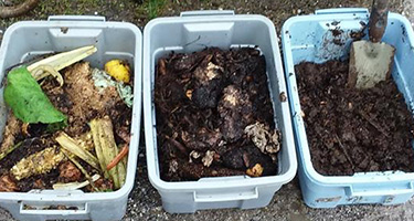 Sorted tubs of compost