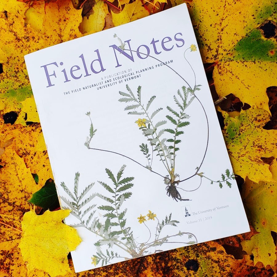 Field Notes issue on autumn leaves