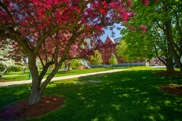 UVM in the fall