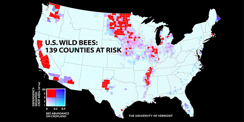 Bee Decline Threatens Us Crop Production Gund Institute For - Vermont-on-us-map