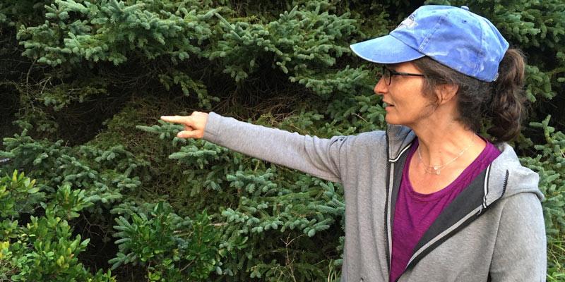 Carol Adair in forest