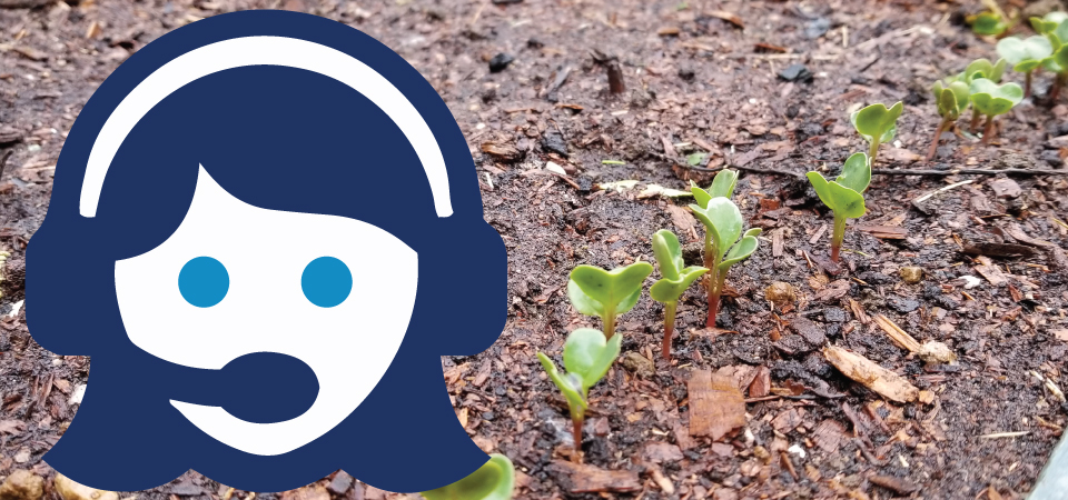 Call center graphic with seedlings