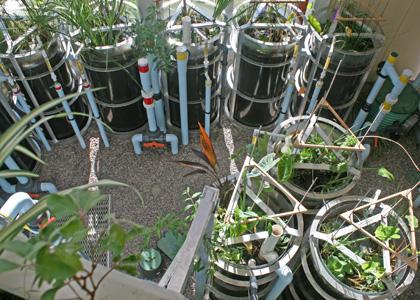 Aiken Center Eco-Machine
