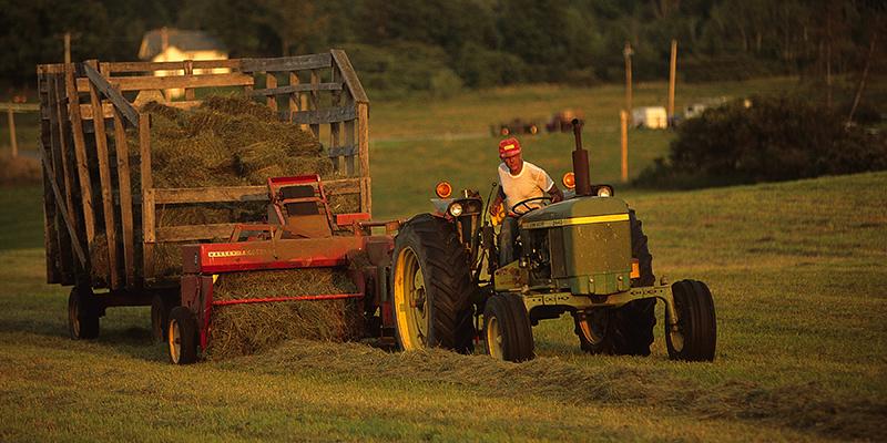Vermont Farmer