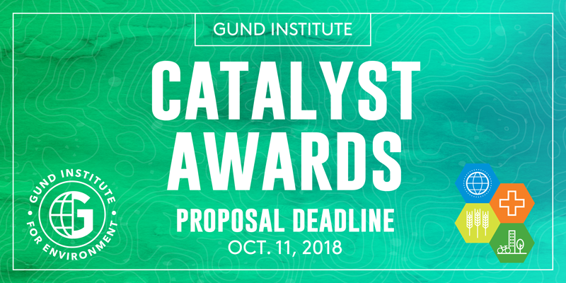 A promotional image for the Gund Catalyst Award seed grant competition.