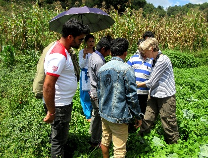 Dr. Ann Hazelrigg shows Nepali farmers how to scout for pests and diseases in the field.