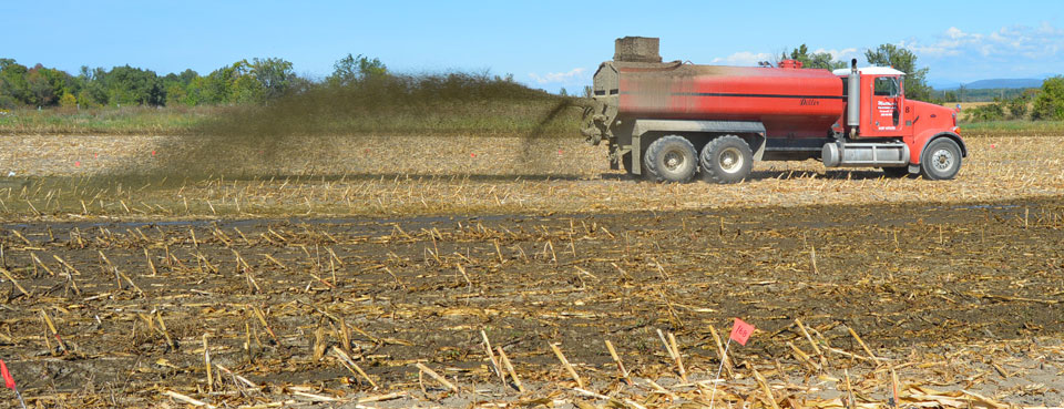 Manure spreading after corn harvest