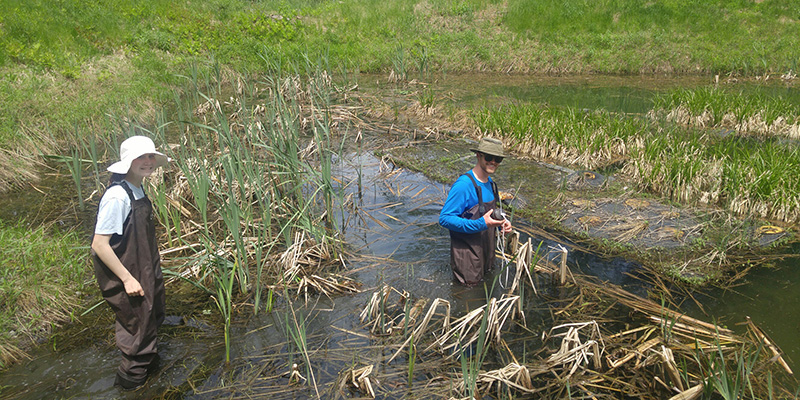Astrid Adams and Matt Fidler in a stormwater retention pond