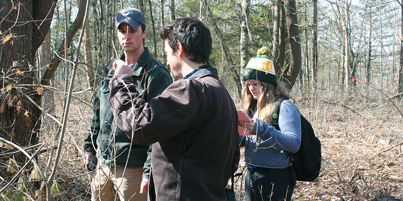Blake Thomas, Nick Tepper, Alissa Young collect data in woods