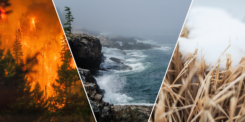 Photo composite of a wildfire, waves hitting a rocky coastline, and a layer of snow atop brown grass.