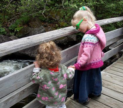 Two children on bridge overlooking a forest stream.