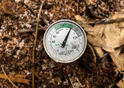 Thermometer in a pile of compost