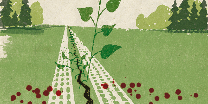 Hand sewing together split in landscape with growing vine