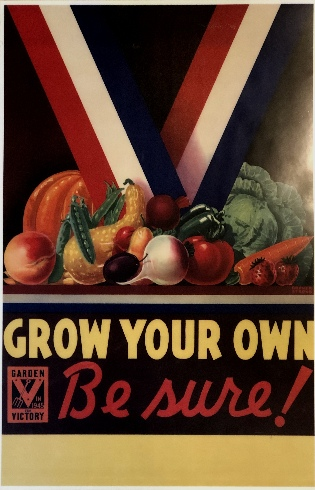 Grow Your Own poster with fruits and vegetables