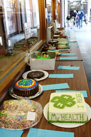 Cakes displayed on a table for silent auction
