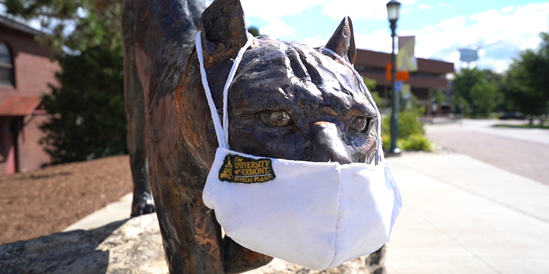 Catamount statue on UVM's campus wears a white mask