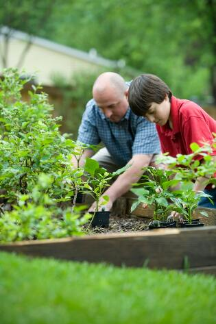 Older man and young boy working in a garden together