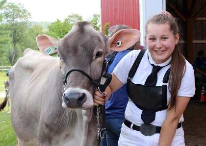 Ellie Bissell with her Brown Swiss summer yearling, Splendiferous