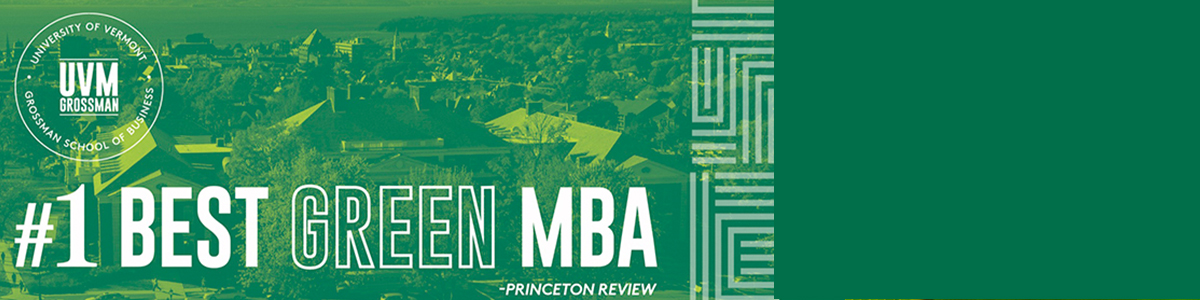 Sustainable Innovation MBA