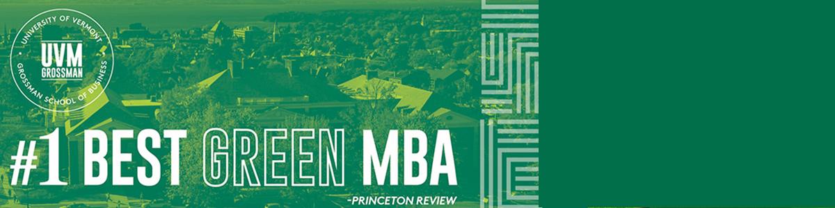 Sustainable Innovation MBA
