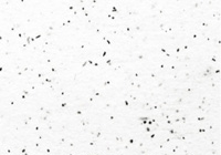 speckle tone example
