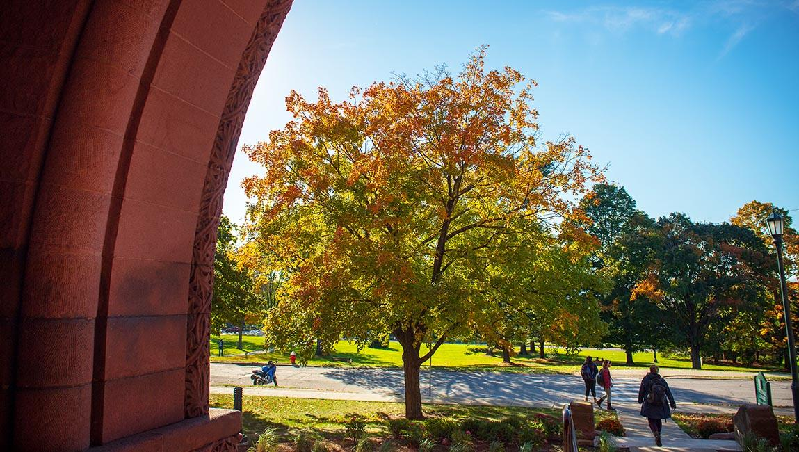 view from front of billngs library in fall