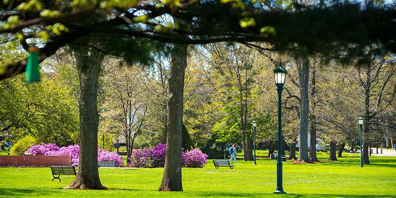 UVM Campus in spring