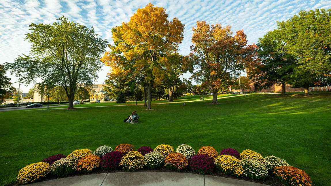 colorful mums around the fountain on the green in fall
