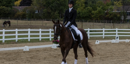 Student riding her horse in the ring