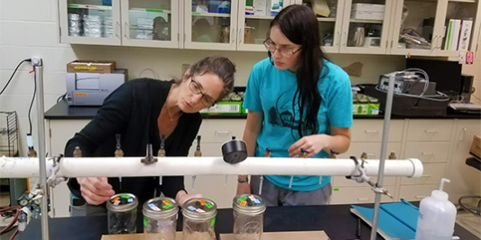 Student works with faculty in lab