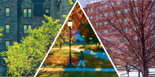 composite photograph of UVM in different seasons