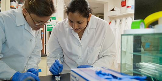 A CEE professor and graduate student in the lab preparing a sample for analysis