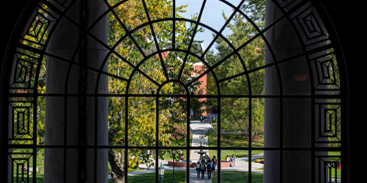 looking out of an ornate iron window in Waterman upon the UVM green
