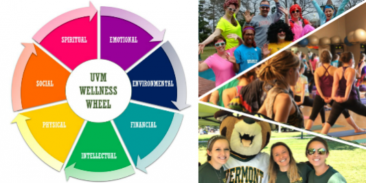 collage of wellness events and dimensional wellness wheel.
