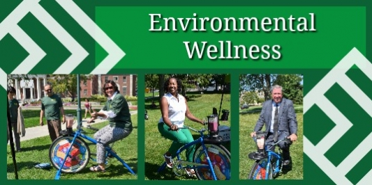 Environmental wellness collage.