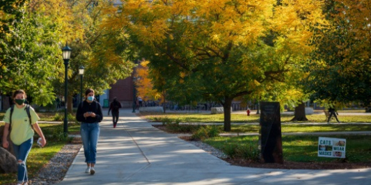 students walking through campus in the fall